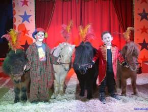 zirkus-pferde-penelli-gross